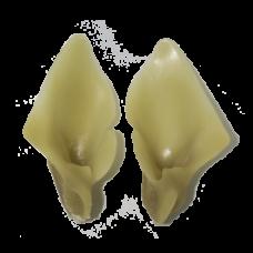 Lynx ears, Elastic