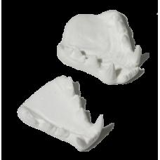 Lynx jaw set, Large