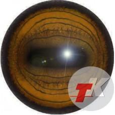 Ibex eyes ТК-1