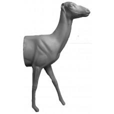 European roe deer ROD-H-1