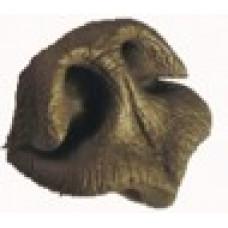 Brown bear nose 250